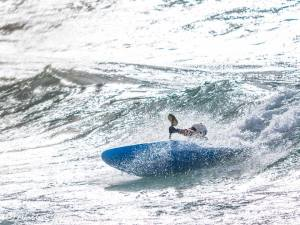 Surf's up! Courtesy Martin Gollery