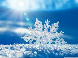 Snowflake big