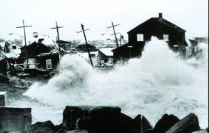 noreaster_library