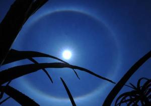 moon halo 3