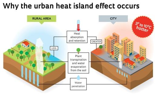 urban heat island1
