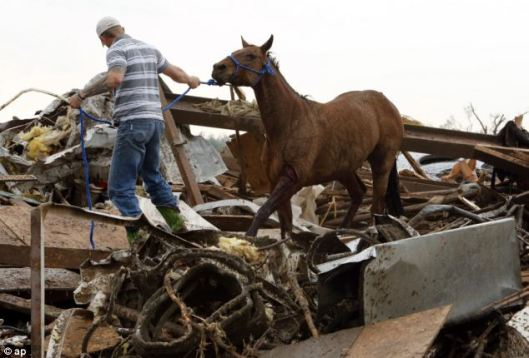 Horse Tornado