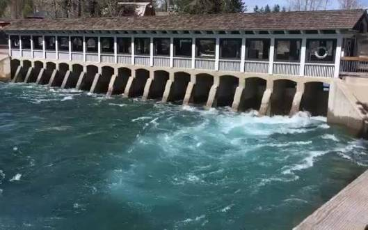 Truckee River flows fast as snowpack melts